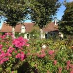 Deel van de bloementuin aan de voorzijde van het woon/gastenhuis. Op dit terrein staan veel rozen, kruiden en enkele fruitbomen.