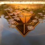 Reflectie van de gevel bij zonsondergang, in de vogeldrinkbak op het terras.