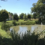 Here, in the loam soil of the Indre-plateau, at 160 m above sea level, there are 2 natural ponds.The pond at the rear side of the house contains fish and water lilies.