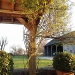 Vue sur la grange de cette terrasse.