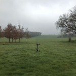 Vue sur le paysage agricole, en automne.