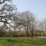 Vue hivernale sur le deuxième étang le long de l`entrée de la propriété.